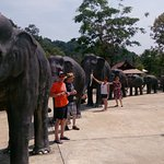 Trang Andaman Gateway Photo