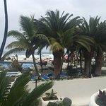 Photo of Costa Martianez