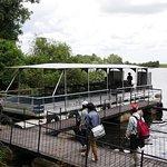 Photo of Chobe Marina Lodge