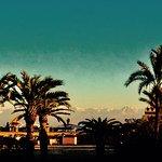 Photo de Riad les Oliviers