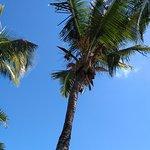 Photo of Laguna Beach Hotel & Spa