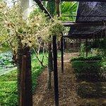 Photo of Phu Thinh Boutique Resort & Spa