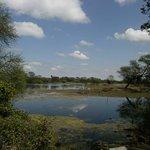 Photo of Keoladeo National Park