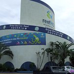 Reef HQ building