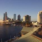 Foto de Westin Tampa Harbour Island