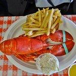 1 1/4 lb lobster