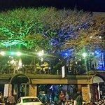 Tree House Restaurante & Cafe Foto