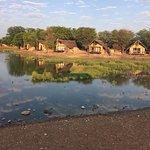 Photo of Madikwe Safari Lodge