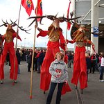 Munster Rugby Fan! Thomand Park, Limerick - 40 mins drive.