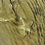 Чистейшая и прозрачная вода в море