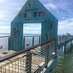 Fish Eye Marine Park Photo