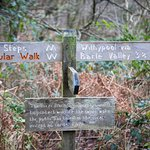 Good signage for the local walks