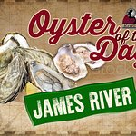 Try our Oysters of the day, so many variations for you to try.