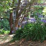 Photo de The Quadrant Hotel and Suites Auckland
