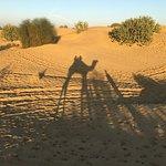 Mind blowing desert safari