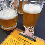 $5 pitcher of Hop Knot IPA