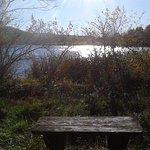 Canoe Creek State Park Foto