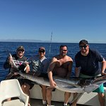 """111.5"""" Striped Marlin caught 03/10/17 with Sushi Time!  Best outfitters in Cabo!!!"""