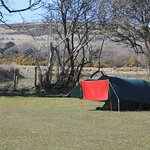 Kennexstone Camping and Touring Park Image