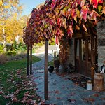 Reception and meeting place - autumn colours at the old stone cottage