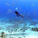 Foto di Banzai Divers Hawaii