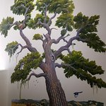 This hand-painted wall mural depicts our local oak habitats