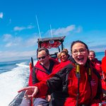 Jet Boat Whale Adventures fun!
