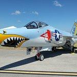 F11 Tiger
