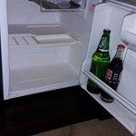 Broken Refrigerator