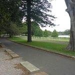 Walking & Jogging Tracks, paved & grassed !