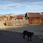 Bartley Ranch Regional Park