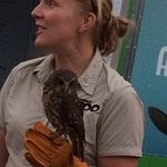 Keeper with 12 month old Morepork