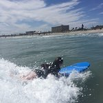 Foto di School Of Surf