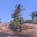 Foto de Bay of Banderas
