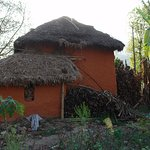 Photo of Ranighat Palace