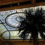 The lovely glass ceiling in the Palm Court