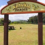 Photo of Kahuku Farms