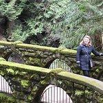 The bridge at Whatcom Falls Park.