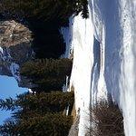 Val Gardena Active - Selva in Val Gardena - Day Excursions