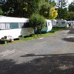 Zdjęcie Remuera Motor Lodge & Inner City Camping Ground