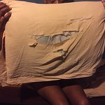 The pillow case in our room at Fantas Folly