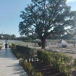Photo of Terme Antica Querciolaia