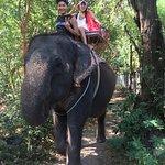Photo of Elephant Village Pattaya
