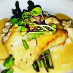 Grouper over parmesan risotto with limoncello beurre blanc
