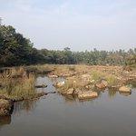 Foto di The Jhadol Safari Resort