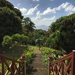 Foto de Le Jardin Malanga