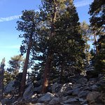 Photo of San Jacinto Mountain
