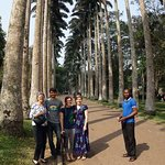 With our guide and the royal palms from Cuba
