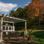 Private quiet spots for autumn contemplation !