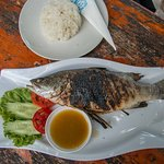 Fresh Grilled Fish with Rice